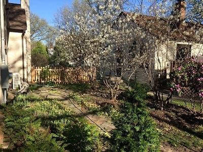 Alternative green burial garden